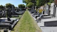 Groendienst onderhoudt paden en groenzones op begraafplaatsen