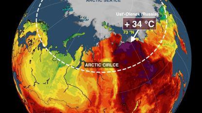 Zo dramatisch is de toestand aan de Noordpool: extreme hitte met temperaturen tot 34 (!) graden