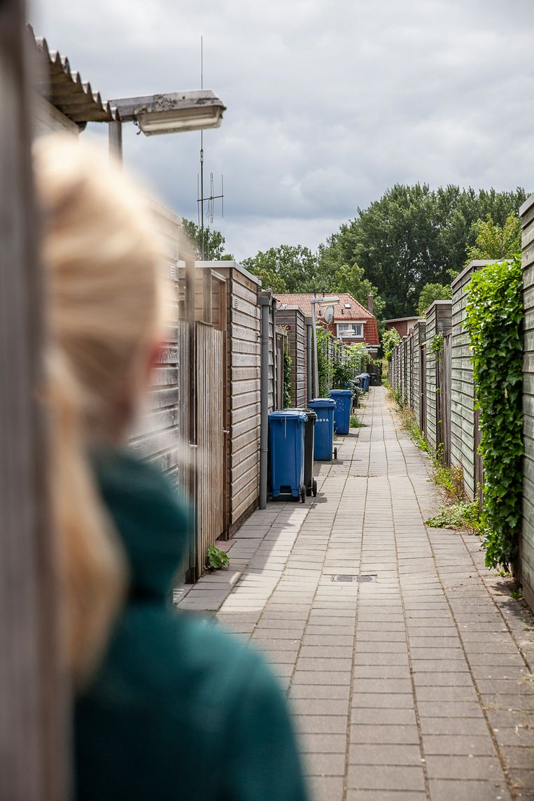Gangetjes achter een huizenblok in Nederland. Beeld null