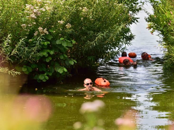 Alexander (50) trotseert al zwemmend alle dertien Reeuwijkse plassen in zes uur tijd