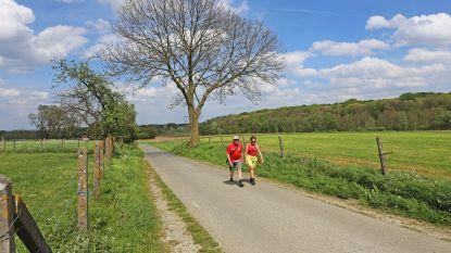 """Geen zomerkamp in Luxemburg door varkenspest? """"Geen probleem: jeugd is welkom in Asse"""""""