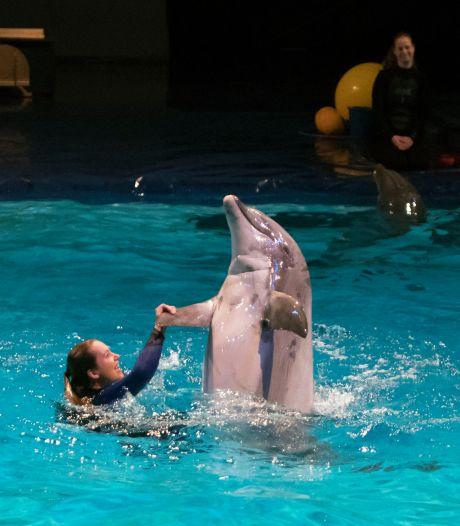 Minister eist dat Dolfinarium dolfijnenshow aanpast