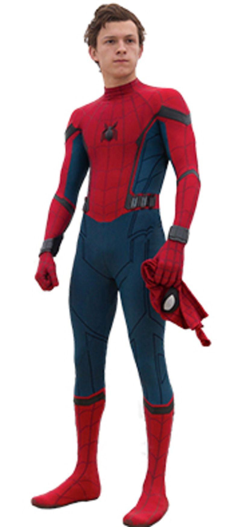 Spider Man Beeld RV