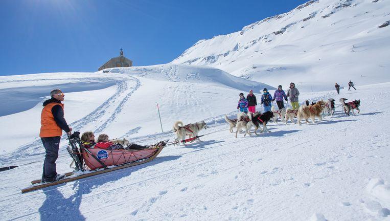 De omgeving van Bonneval is een populair gebied voor de traineau: een hondenslee. Beeld Daniel Durand