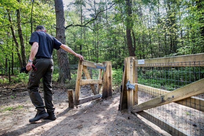 Het wildraster in Epe. Volgens de gemeente laten mensen vaak het hek openstaan, met als gevolg dat dieren kunnen oprukken naar de bebouwde kom.
