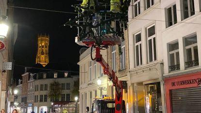 Meer kerstbomen dan ooit en een kanjer van 13 meter hoog op de Burg: stad Brugge wil meer sfeer met eindejaar