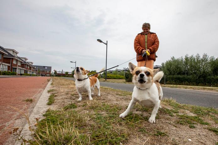 Wel honden, maar geen nieuwe uitrenplek voor de viervoeters in nieuwbouwwijk Woerdblok.