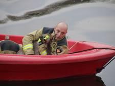 Reebokje gered van verdrinkingsdood in Rogat