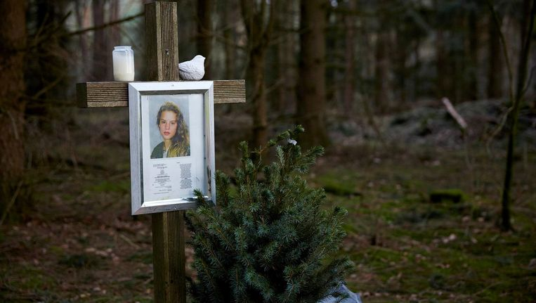 Het monument voor de vermoorde Nicole van den Hurk aan de Mierloseweg tussen Mierlo en Lierop, de plek waar haar lichaam werd gevonden in 1995. Beeld null