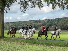 35 'jagers' te paard tijdens de slipjacht in Milsbeek