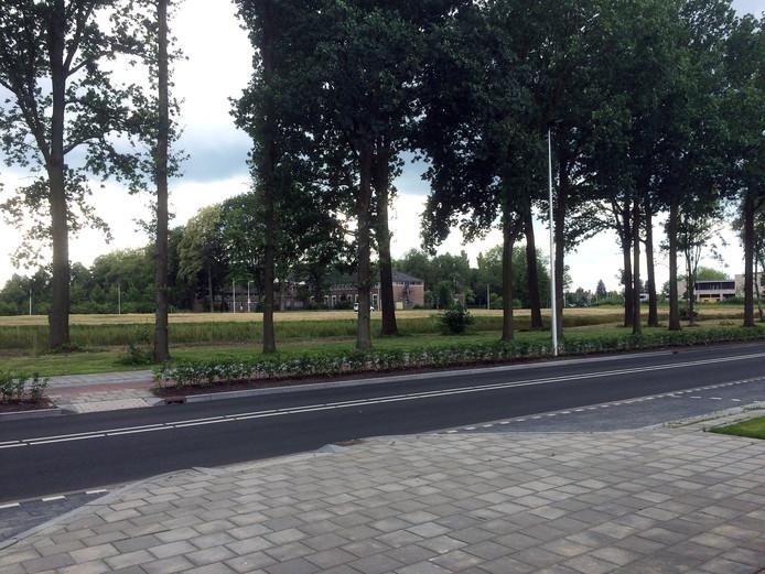 Op het terrein van het voormalige klooster en internaat aan de Edward Poppelaan en op de resterende sportvelden aan de Zonnestad in Etten-Leur worden maximaal honderd appartementen gebouwd.
