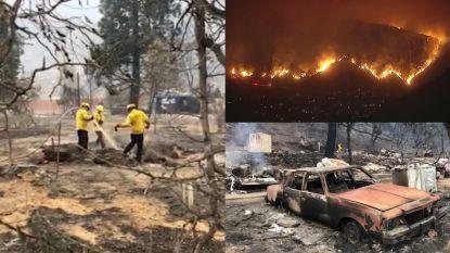 Natuurbrand Californië: meer dan 10.000 hectare in as gelegd
