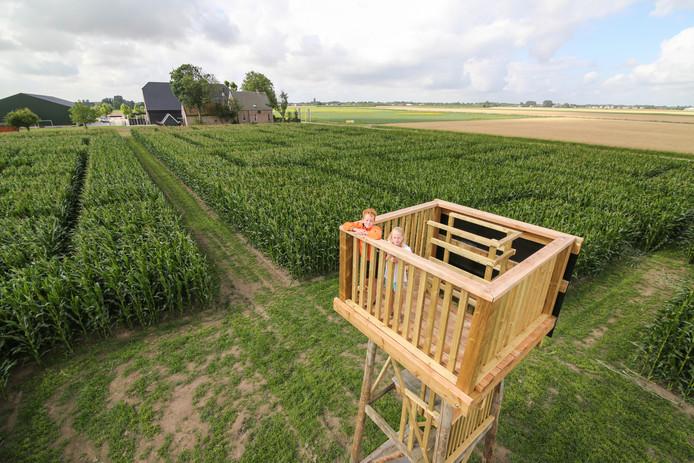 De uitkijktoren is het middelpunt van het maisdoolhof bij De Koningshoeve in Klaaswaal.