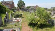 """Oude begraafplaats van Pamel blijft in verloederde staat: """"Nieuw onderhoudsplan moet soelaas brengen"""""""