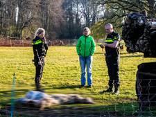 Niet twee, maar drie keer schapen geslacht en onthoofd in regio Deventer: politie vraagt hulp publiek