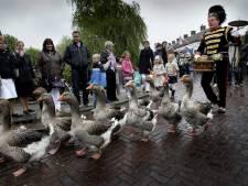 Vogelgriep staat ganzenparade in Tubbergen in de weg: 'Drie keer is scheepsrecht'