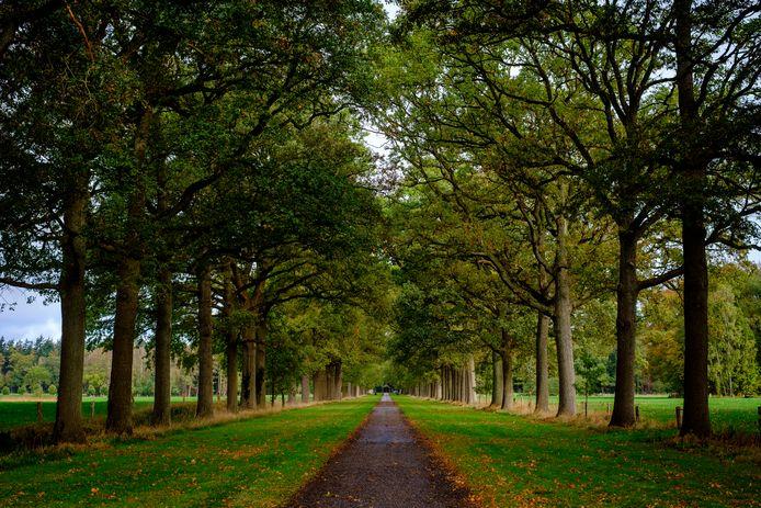Twents landschap in Denekamp.