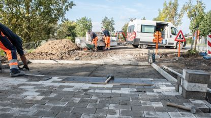 Gemeente smukt verloederde plek langs Steenweg in Asper op tot klein parkje