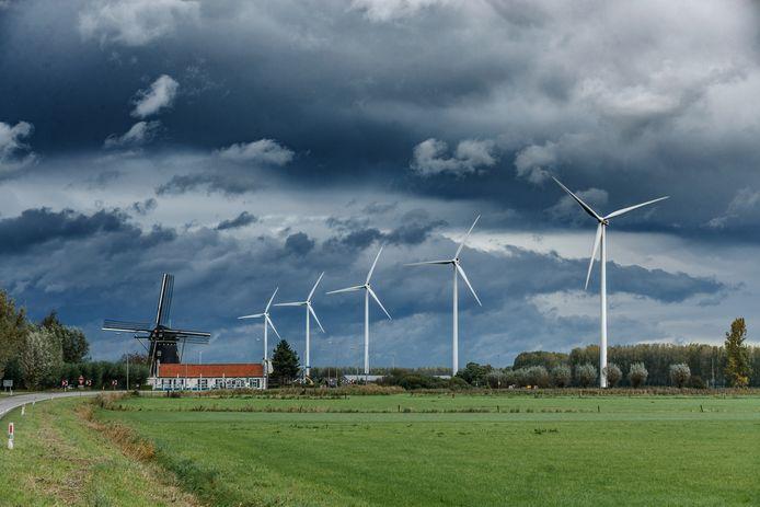 Windmolens in de polder.