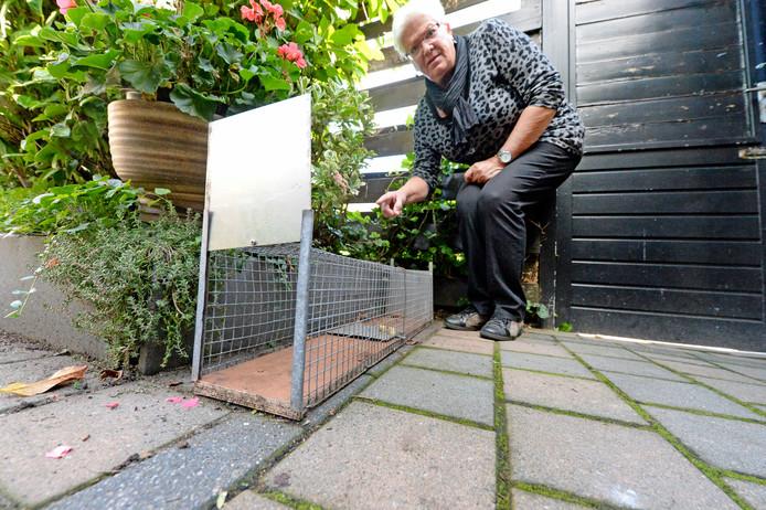 Vlak nadat Inge Gerberink zowat struikelde over een rat liep het beest in de val die al lang in haar tuin staat.