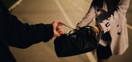 Arnhemmer krijgt twee jaar celstraf voor vier tasjesroven en mishandeling