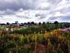 Dit zijn de grote bouwprojecten waar je in 2021 wat van gaat zien in Roosendaal, Rucphen en Halderberge