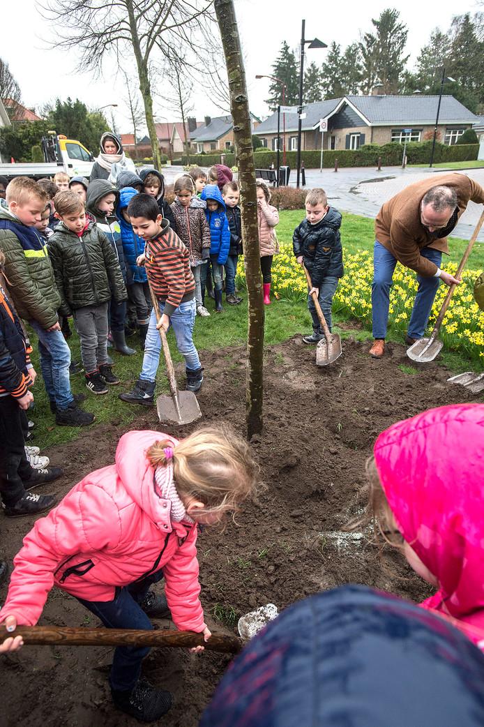 Kinderen van basisschool De Zonnebloem in Zundert planten samen met wethouder Patrick Kock een boom aan de Nederven.