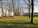Zicht op Hogeschoollaan/Cuneratorenstraat in de Torenbuurt, grenzend aan de universiteit,