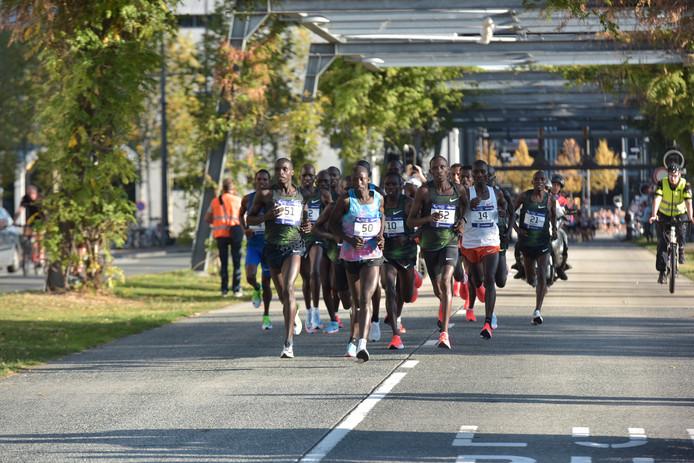 De marathonlopers vlak na de start. Vrij snel werd een kopgroep gevormd.