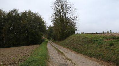 11 kilometer wegen vernieuwd in ruilverkaveling Willebringen