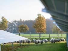 Aanleg zonnepark in Veldhoven nabij