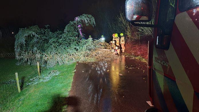 De brandweer verwijderd een boom en lantaarnpaal op het fietspad van de Parallelweg in Duiven.