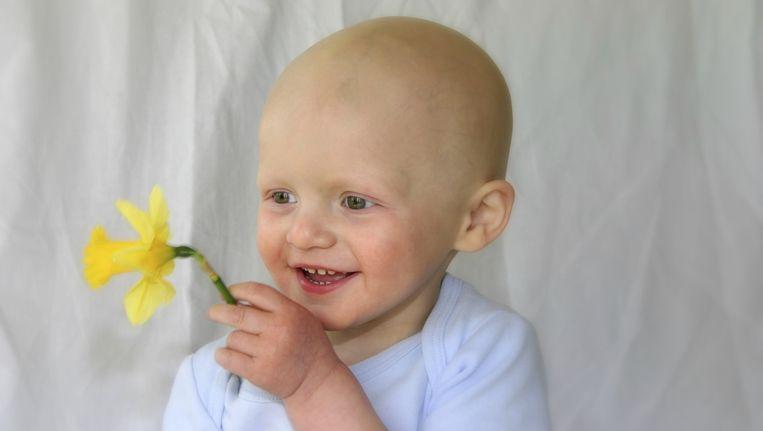 De onderzoekers vonden een hogere gevoeligheid voor blootstelling aan kankerverwekkende stoffen, vooral bij jongens en met name voor leukemie.