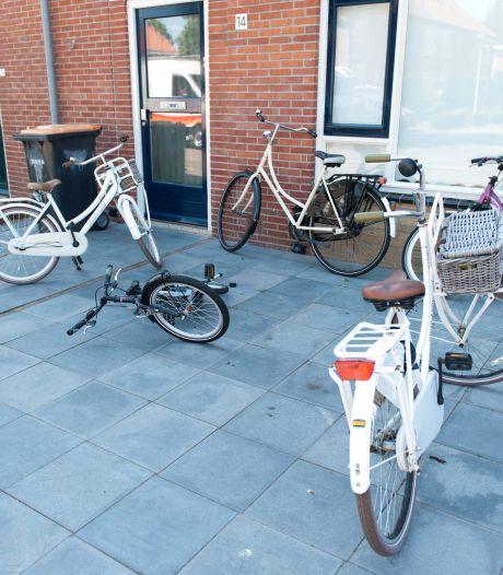 Raalte in top 10 gemeentes met meest versteende tuinen: 'Zou je misschien eerder in Amsterdam verwachten'
