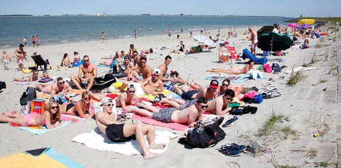 Zomerse drukte op het strand bij Perkpolder.