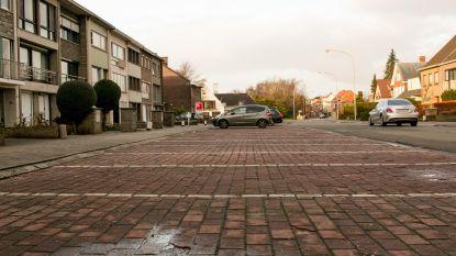 'Ontharding' in Baenslandwijk: Minister kent subsidies toe om beton en asfalt te vervangen door water en groen