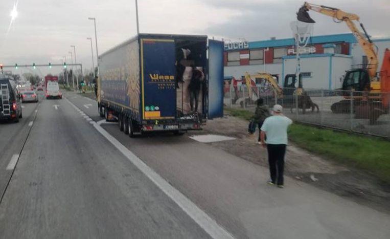 De Hongaarse chauffeur zag heel wat illegalen uit zijn vrachtwagen komen.