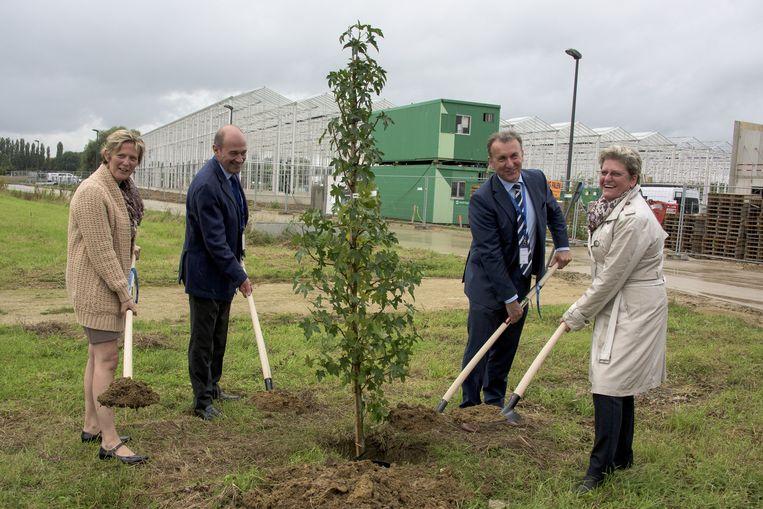 Katrien Partyka (links) en Rob van Tetering (tweede van rechts) helpen mee een eerste Amberboom te planten. Deze plant produceert een zoetstof.