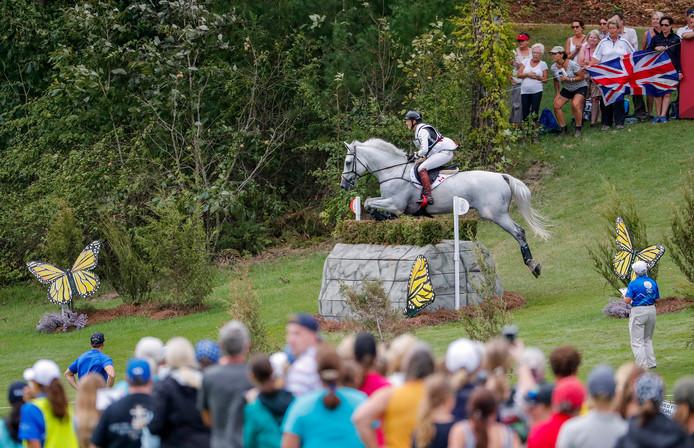 Een sfeerbeeld van de Wereldruiterspelen. Het paard op de foto is niet een van de twee omgekomen dieren.