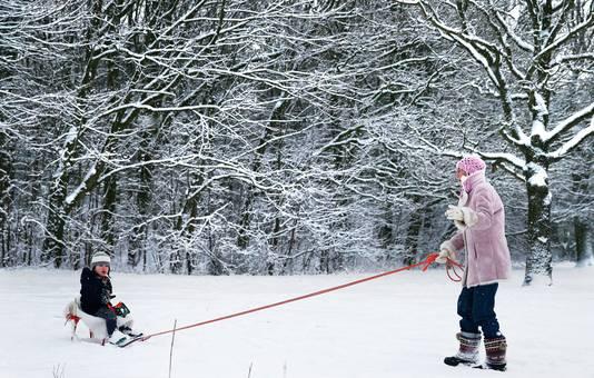 Een vrouw trekt een kind op een slee door de sneeuw in het Rotterdamse Kralingse Bos.