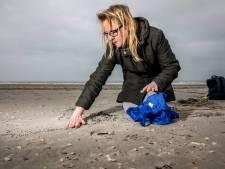 Aanpak van plastic korrels op strand hard nodig: Zeedieren en vogels zien het aan voor voedsel
