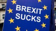 Meerderheid Britten vindt brexit foute beslissing