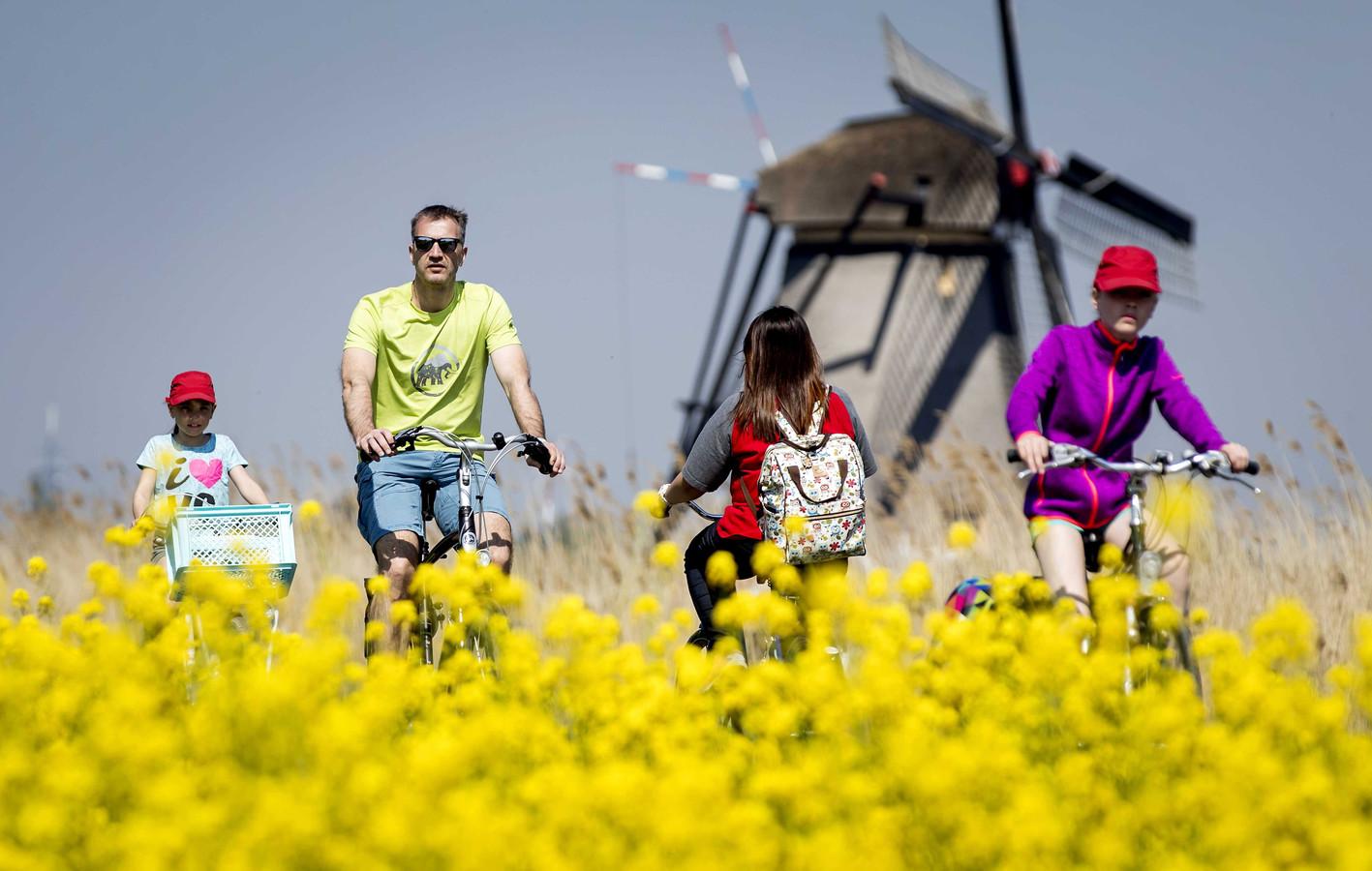 Toeristen op de fiets over de Kinderdijk, afgelopen paasweekend.