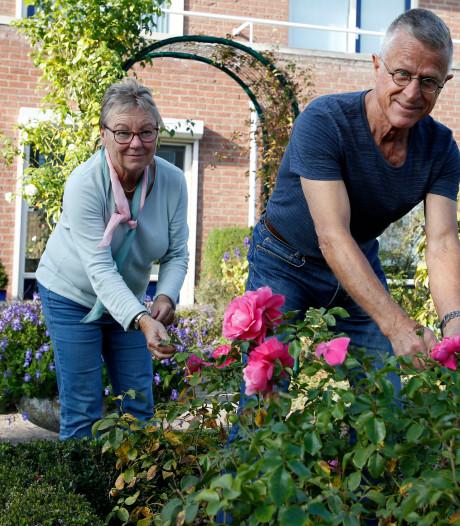 Rinus en Dimph hebben prijswinnende tuin: de buxus hebben het gered