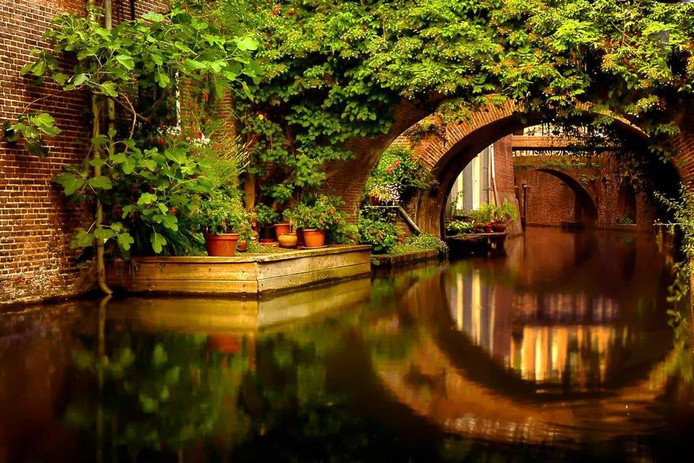Deze fotograaf vindt de zomer in eigen stad. In de Nieuwe Krommegracht, om precies te zijn.
