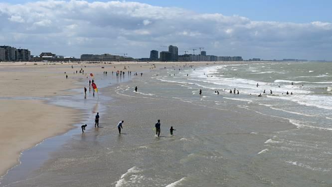 Dief steelt handtas op strand terwijl koppel in zee zwemt: jaar gevangenis