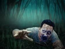 Halloween Raamsdonk: steeds beter, steeds enger