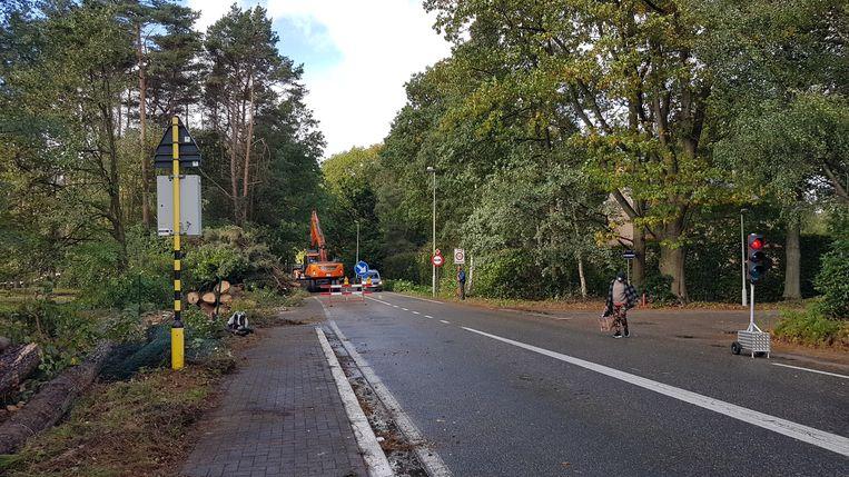 De grote kapwerken voor de aanleg van de fietspaden is volop aan de gang.