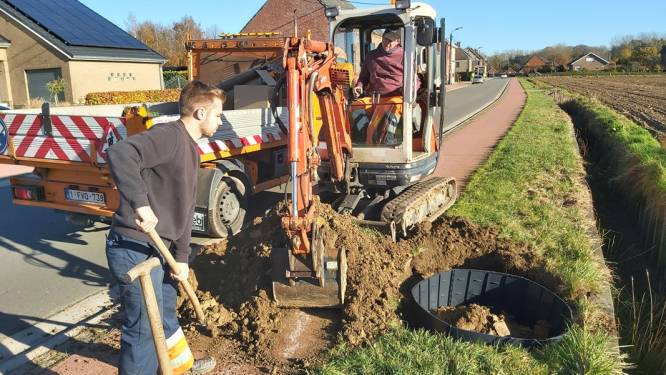 Linterpoortenlaan krijgt 41 laanbomen tussen fietspad en gracht