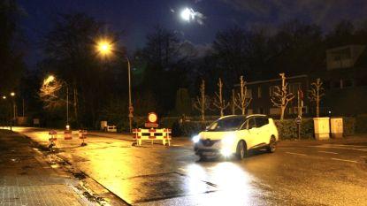 Hoogboomsteenweg afgesloten: bomen dreigen om te vallen